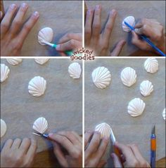 Modeling Chocolate Seashells