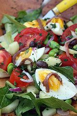 Salade Niçoise by David Lebovitz (includes cucumber, fava beans)