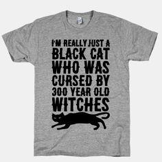 I'm Really Just A Black Cat