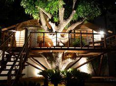 Casa na árvore é coisa de adulto tambem!! Eu querooooo