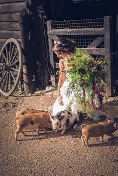 Wedding on a farm with pigs Photo Credit: Perfect Timing Photography Alternative Wedding Inspiration, Country Wedding Inspiration, Alternative Bride, Cat Wedding, Wedding Dreams, Dream Wedding, Southern Charm Wedding, Wedding Photographer London, Farm Photography