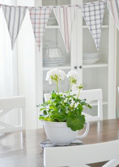 Red And Pink, Pink White, Feel Good Pictures, Pink Geranium, Red Geraniums, Swedish House, White Cottage, Dining Area, Dining Room