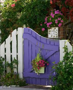 Love the curve of this little purple gate!