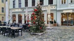 Weihnachtlicher Neumarkt in Dresden