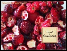 Homemade Dried Cranberries Loula Natural