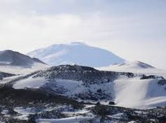 tundra environment - Google Search