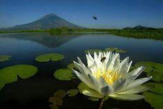 Laguna El Jocotal. San Miguel. Cortesía grupo Beautiful El Salvador.