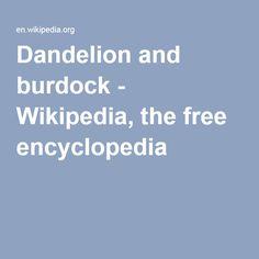 Dandelion and burdock - Wikipedia, the free encyclopedia