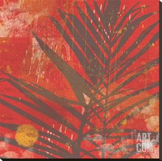 Exotic Palm Stretched Canvas Print by Erin Clark at Art.com