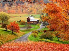 Autumn Colours Beautiful PostersBeautiful SceneryWallpaper