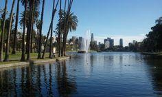 Echo Park in Los Angeles. The actual park part.