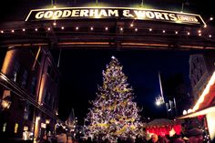 Holiday Tree, Christmas Holidays, Christmas Tree, Instagram Website, Distillery, Toronto, Trees, In This Moment, Facebook
