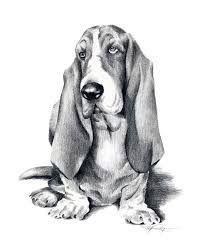 basset hound caricatura - Buscar con Google