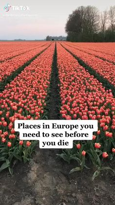 Beautiful Places To Travel, Cool Places To Visit, Vacation Places, Vacation Spots, Vacations, Reisen In Europa, Places In Europe, Destination Voyage, Future Travel
