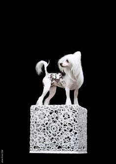 Crochet Table by Erwin Olaf