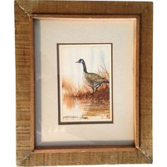 Peter J. O'Callaghan, Canadian Goose,  Watercolor Painting, 1983 Works on Paper, Signed by Connecticut Wildlife Artist and Illustrator,