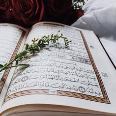 Learn Quran Academy provide the Quran learning services at home. Our mission to teach Quran with proper Tajweed and Tafseer to worldwide Muslim community. Islamic Quotes, Islamic Images, Islamic Inspirational Quotes, Muslim Quotes, Quran Quotes, Islamic Pictures, Wisdom Quotes, Arabic Quotes, Alhamdulillah
