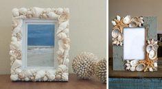 Frame, Home Decor, Art, Coral, Snails, Shells, Souvenir, Picture Frame, Art Background