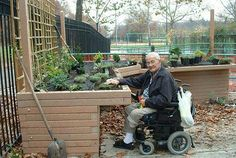 Accessible garden... Love this idea!
