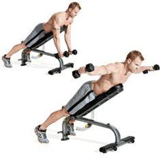 Best full gym back workout » Reddit fitness™