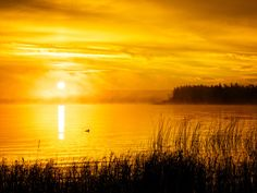 Sunset Tips | Olympus