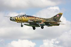 Sukhoi Su-17 Fighter Military Jets, Military Aircraft, Fighter Aircraft, Fighter Jets, Air Tiger, Sukhoi, Nose Art, Aviation Art, Paint Schemes