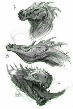 Getting in some sketch work for dragons and some idea generating. Creature Concept Art, Creature Design, Creature Drawings, Animal Drawings, Dragon Anatomy, Dragon Sketch, Dragon Artwork, Dragon Drawings, Mythical Creatures Art