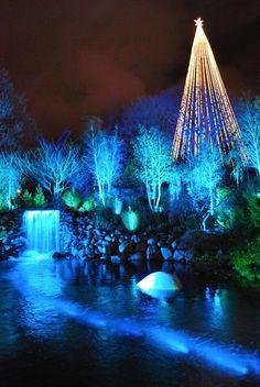 Christmas at Liseberg. An amusement park in Sweden Gothenburg. So beautiful!