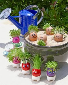 How to make a Mr Sprout egg planter: Plant up a wacky family of greens. They're egg-cellent! -ashley