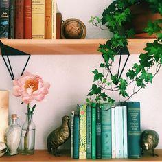 Bookshelf Organizing - New 2
