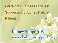 Early signs of kidney failure cleaning your liver and kidneys,could i have a kidney infection and not know it effects of kidney failure,how to prevent kidney disease naturally infection in your kidneys. Signs Of Kidney Failure, Kidney Failure Symptoms, Kidney Infection, Kidney Cleanse, Kidney Stones, Dialysis, Purpose, Life