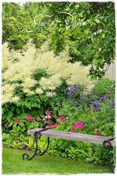 Lovely spot in the garden for a bench.