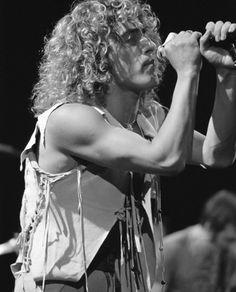 I love you, curly headed Englishman