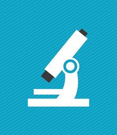 Curiosités à explorer davantage : • Toute la gamme de possibilités qu'offre Google Apps for Education - une suite gratuite d'outils de collaboration et de productivité, intégrant Gmail, Drive Google doc • Mini-MOOC (Dawson College) en développement • Fab lab pour donner accès à des outils (Edouard-Montpetit). Également expérimenté à  Thetford et en Outaouais • Accueil TIC et méthodologie (Granby) • iTunes U course manager et iBooks author (Rosemont)