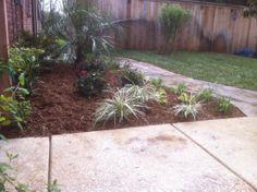Groundscape, a Fort Worth Landscape Company, Little tropical garden.