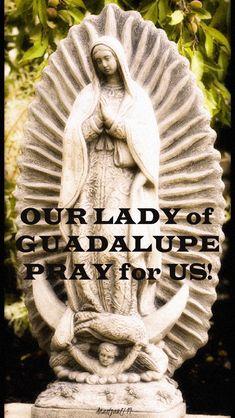 Catholic Prayers In Spanish, Catholic Art, Mary Of Guadalupe, Gospel Of Luke, Lord Help Me, Jesus Christ Images, Overcome The World, Christian School, Holy Mary