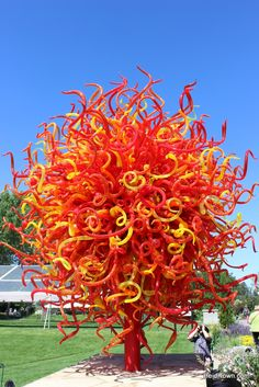 """""""Summer Sun"""" at #Chihuly. #Denver Botanic Gardens in #Colorado. See more: http://www.heiditown.com/2014/09/09/blown-away-chihuly-denver-botanic-gardens/"""