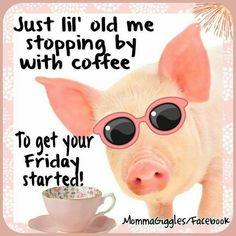 Good Morning Friday, Good Morning Funny, Good Morning Good Night, Morning Humor, Good Morning Quotes, Happy Friday, Friday Morning Quotes, Sunday, Friday Coffee Quotes