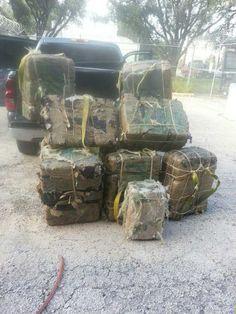 Duval County Authorities Seize Nearly 500 Pounds of Marijuana - KiiiTV.com South Texas, Corpus Christi, Coastal Bend