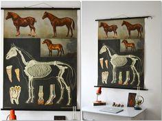 Vintage Jung Koch Quentell horse school pull down von MightyVintage, €190.00