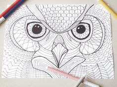 owl head coloring page owl eyes kids adults instant download colouring wicca whimsical diy bird lover printable owl digital lasoffittadiste