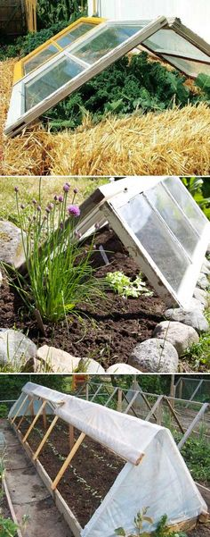 Top 10 Cold Frame Tips for Fall and Winter Veggies Gardening Simply using an old window to make an A-Shaped cover, together with garden edging from straw bales or stones to form a super easy cold frame. Garden Edging, Garden Trellis, Easy Garden, Herb Garden, Small Gardens, Outdoor Gardens, Cold Frame Gardening, Gardening Tips, Organic Gardening