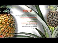 Piña. Nombre científico. Identificación, contenido y principios activos. Características generales de la planta. Propiedades de la Piña. Propiedades medicinales atribuidas. Usos de la piña.