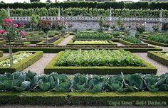 Стильная планировка огорода: Огород и архитектура — вполне совместимые понятия. Бывают такие огороды, которые являются декоративной «жемчужиной» сада. Главное — нестандартная идея и стильное оформление. Каким же может быть нестандартный подход для оформления огорода? Вариант первый: меняем форму грядок. Вместо привычных прямоугольников, придаем грядке форму овала или треугольника. Форма грядки на урожайность не влияет. Вариант второй: визуально выделяем грядку. Можно сделать грядку…