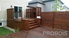 patio 221