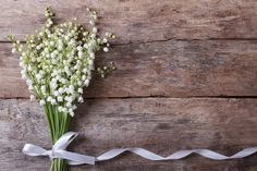 lily-bouquet-white-flowers-4k-wallpaper.jpg (3840×2560)