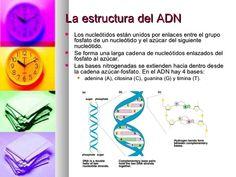 Resultado de imagen para codigo genetico Dna