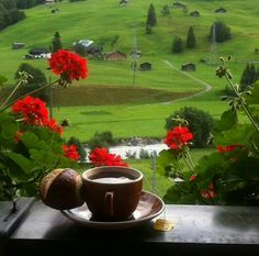 Coffee / Switzerland