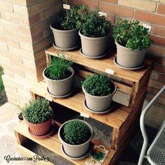 Le mie #erbe #aromatiche! È arrivata la #primavera e questo è il primo angolo che ho creato