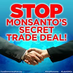 """We must stop this sham of a trade deal that aims to put corporate profits ahead of our basic democratic rights. This could be a huge setback in the fight to defeat the TPP and win mandatory labeling of genetically engineered foods. It's a damn good thing Hillary's not lying when she says she's not influenced by money, surely she'll stand up to Monsanto and say """"cut it out""""...how blissful it must be to go through life being utterly gullible and naive !!!"""